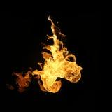 Feuer flammt die Sammlung, die auf schwarzem Hintergrund lokalisiert wird Stockfotografie