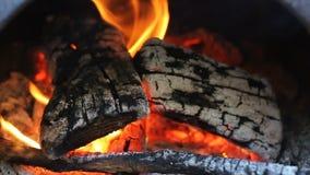 Feuer, glühend, Asche und Flammen kamin stock video