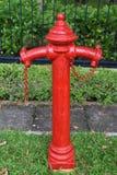 Feuer Hidrant Stockbild