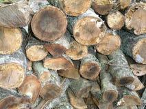Feuer-Holz Lizenzfreie Stockbilder