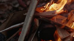 Feuer im Fall durch den See stock video footage