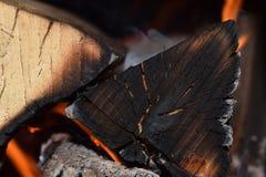 Feuer im Feuerplatz stockbild