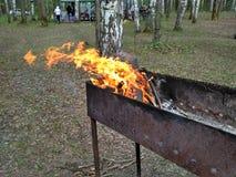 Feuer im Grill lizenzfreies stockbild