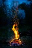 Feuer im Wald Lizenzfreies Stockfoto