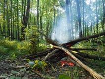 Feuer im Wald am Sommerabend Lizenzfreies Stockfoto