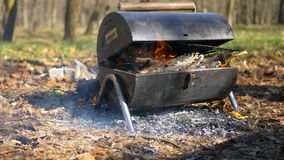 Feuer im Wald während eines Picknicks Während Leute einen bbq im Wald beleuchteten, leuchteten trockene Blätter unter ihm stock video