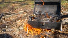 Feuer im Wald w?hrend eines Picknicks stock video footage
