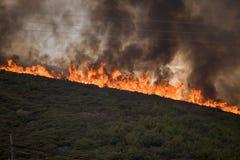 Feuer u. Abholzung stockfotos