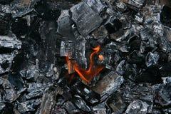 Feuer und Asche stockbilder