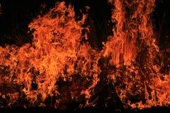 Feuer-und Flammen-Hintergrund - schöne brutzelnde Hitze Stockbild