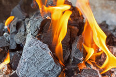 Feuer und Kohlen schließen oben Brennendes Feuer-helle Flammen Stockbild