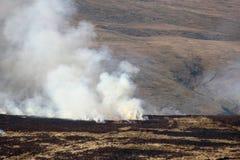 Feuer und Rauch auf brennender Heidemoorvegetation. Stockbild