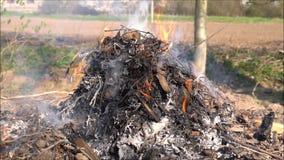 Feuer und Rauch auf Garten stock footage