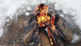 Feuer und Rauch Glühen, brennendes Holz in einem Feuer, Feuer Bunte Flamme und graue Asche, verkohlt mit Barke stock video footage