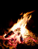 Feuer wärmt den Campingplatz Stockfotografie