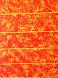 Feuer-Wand Lizenzfreies Stockfoto