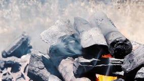 Feuerflammen und -Holzkohle stock video footage