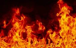 Feuerhintergrund auf Schwarzem Stockfotos