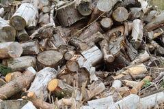 Feuerholz in den warmen Farben Lizenzfreie Stockfotos