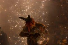 Feuerlack-läufer Stockfoto