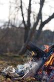 Feuern Sie hölzerne Details, Rest im Wald ab Stockfoto