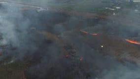 Feuerschilfe auf dem Fluss Luftvermessung stock video