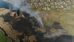 Feuerschilfe auf dem Fluss Luftvermessung stock video footage