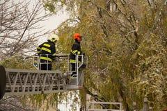 Feuerwehrmänner in der Tätigkeit Lizenzfreie Stockfotografie