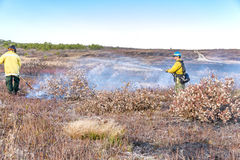 Feuerwehrmänner, die heraus ein Buschfeuer setzen stockfotografie