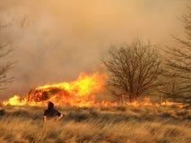 Feuerwehrmann, der entlang des Feuers anstarrt Lizenzfreie Stockbilder