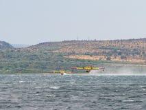 Feuerwehrmannflugzeug, Löschflugzeug, Luftbehälter, der Wasser von t nimmt Lizenzfreies Stockfoto