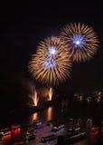 Feuerwerk über dem Rhein-Tal Lizenzfreie Stockbilder