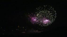 Feuerwerk-Bildschirmanzeige stock video