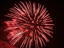 Feuerwerk in der Bewegung. Stockbild