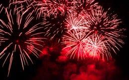 Feuerwerk in der Nacht. Stockbild