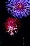 Feuerwerk in Wien no.2 Stockbild
