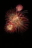 Feuerwerke. Lizenzfreies Stockfoto