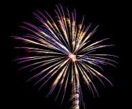 Feuerwerke 1 Lizenzfreie Stockfotografie