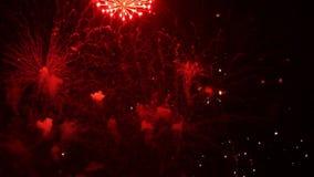 Feuerwerke 16 stock video