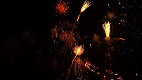 Feuerwerke 7 stock video footage