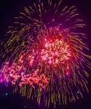 Feuerwerke Stockfotos