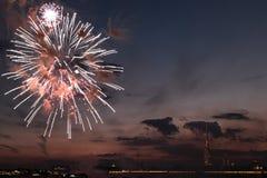 Feuerwerke am Abend Stockbild