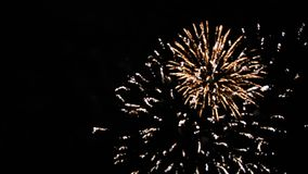 Feuerwerke auf bewölktem Himmel stock footage