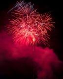Feuerwerke auf Meer Stockbild