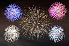 Feuerwerke in der Nacht lizenzfreie abbildung