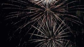 Feuerwerke in der Zeitlupe stock footage