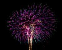 Feuerwerke für neues Jahr Lizenzfreie Stockfotos