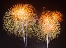 Feuerwerke gegen einen schwarzen Himmel Stockfotos