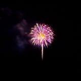 Feuerwerke leuchten dem Himmel lizenzfreie stockfotos