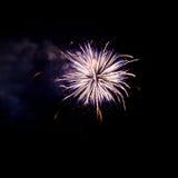 Feuerwerke leuchten dem Himmel lizenzfreies stockfoto
